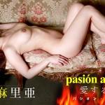 パシオン・アモローサ 〜愛する情熱 3〜