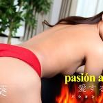 パシオン・アモローサ 〜愛する情熱 4〜