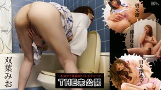 THE 未公開 〜本気で不体裁なトイレオナニー3〜