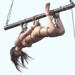 空中拷問アクメ刑務所