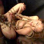 女スパイ軍団VS女体拷問研究所