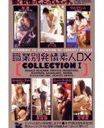 職業別発情素人DX COLLECTION1